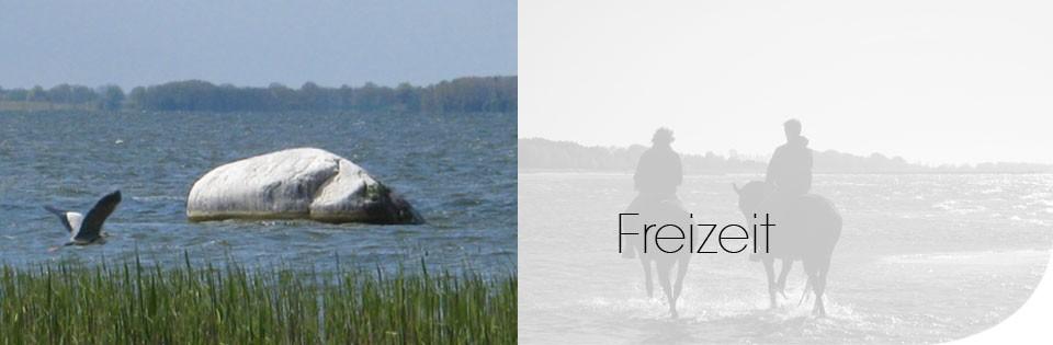 Freizeit an der Ostsee
